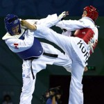 Differences Between Aikido and Tae Kwon Do