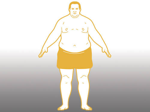 body type endomorph