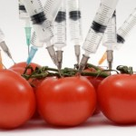 Genetically Modified and Enhanced Foods