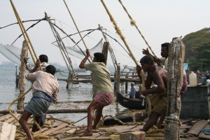 Bringing in the catch in Cochin